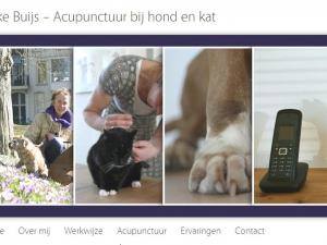 acupunctuur-dierenarts-eyedomind